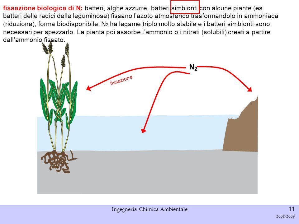 Università di Padova LASA – Laboratorio di Analisi dei Sistemi ambientali Ingegneria Chimica Ambientale 12 2008/2009 Fissazione biologica N2N2N2N2 fissazione non biologica di N: combustione nei motori (alta T), fulmini, processi industriali.