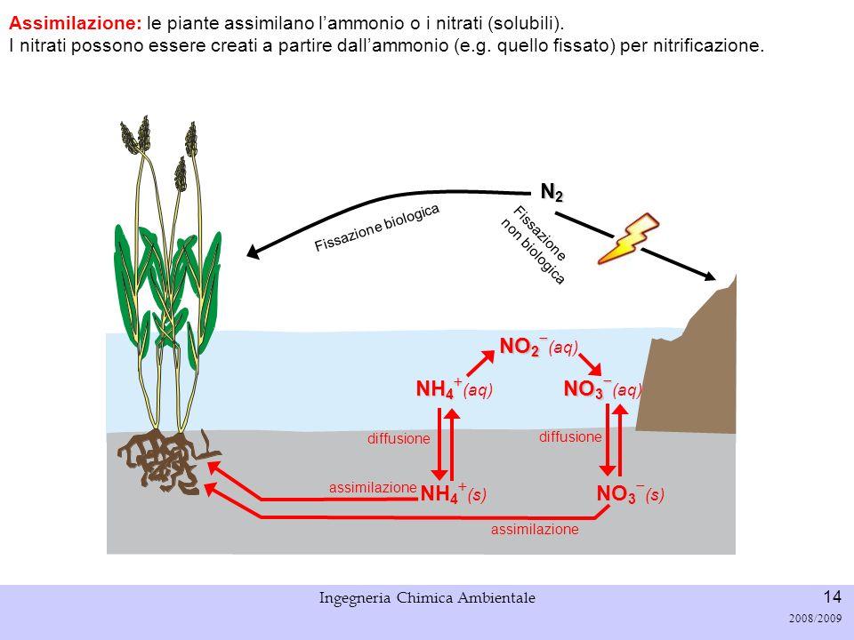 Università di Padova LASA – Laboratorio di Analisi dei Sistemi ambientali Ingegneria Chimica Ambientale 15 2008/2009 Fissazione biologica N2N2N2N2 Catena alimentare: lazoto entra nel ciclo passando dai produttori primari al resto della rete trofica Fissazione non biologica NH 4 NH 4 (s) NO 3 NO 3 (s) NH 4 NH 4 (aq) NO 2 NO 2 (aq) NO 3 NO 3 (aq) assimilazione Predazione diffusione