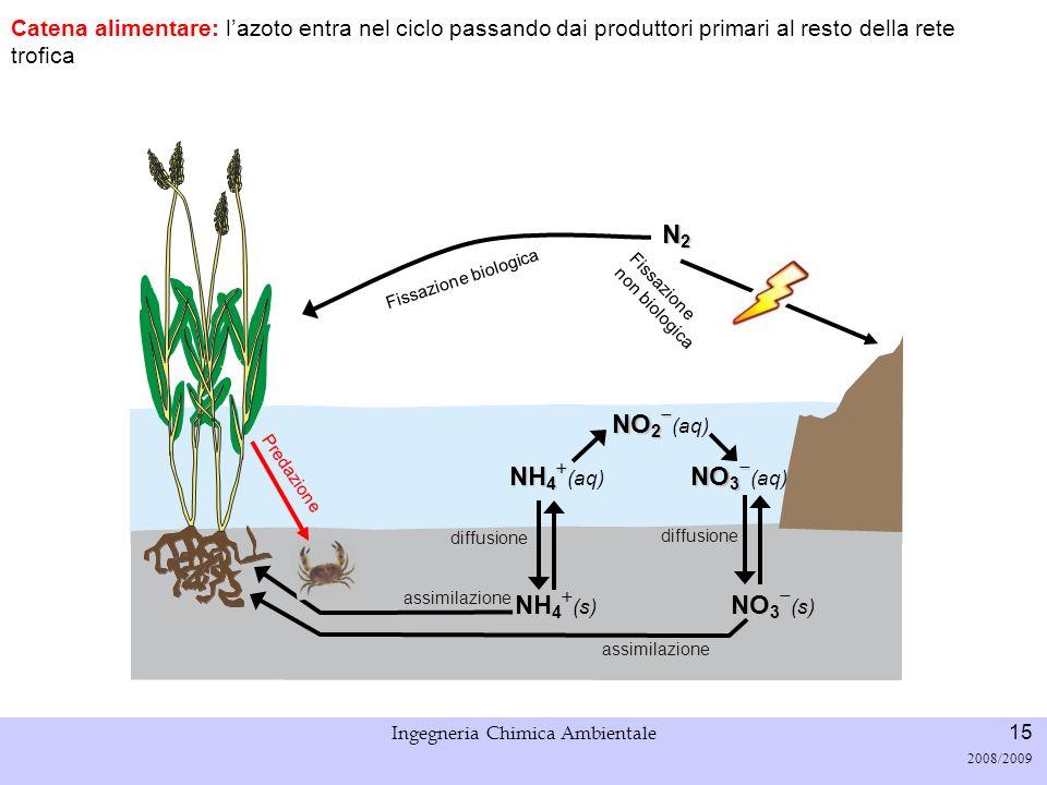 Università di Padova LASA – Laboratorio di Analisi dei Sistemi ambientali Ingegneria Chimica Ambientale 16 2008/2009 Fissazione biologica N2N2N2N2 Decomposizione e ammonificazione: i batteri decompongono la sostanza organica (escrezioni/rifiuti degli organismi, organismi morti, etc.) e si ha rilascio di azoto organico (e.g.