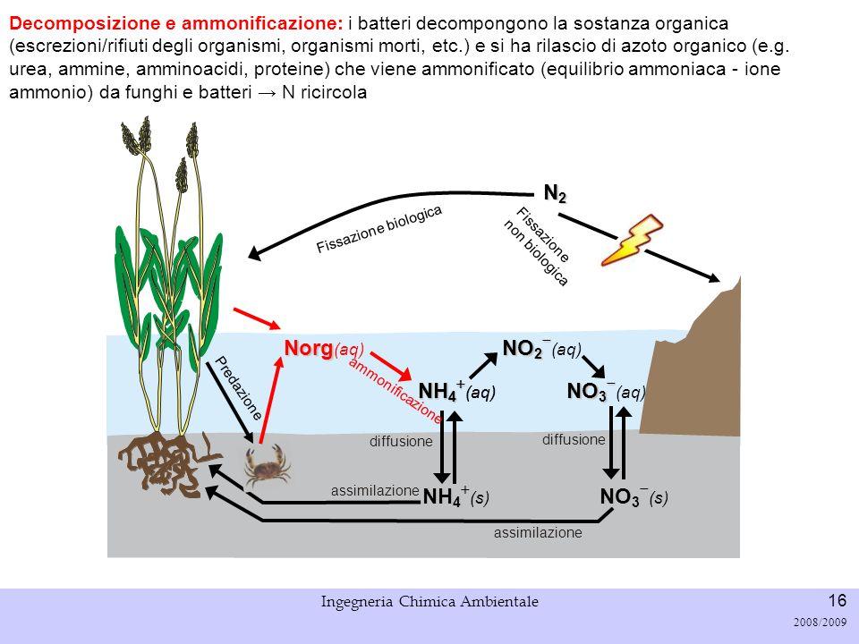 Università di Padova LASA – Laboratorio di Analisi dei Sistemi ambientali Ingegneria Chimica Ambientale 17 2008/2009 Fissazione biologica N2N2N2N2 Sedimentazione, risospensione e seppellimento: in ambiente acquatico lazoto organico può interagire coi sedimenti, e uscire dal sistema.