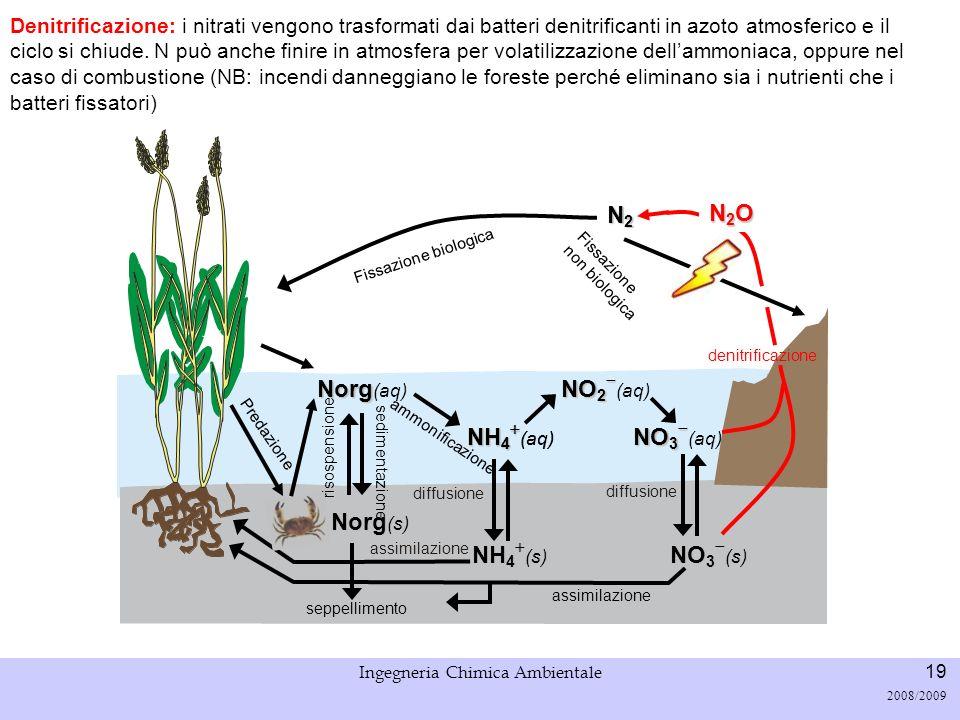 Università di Padova LASA – Laboratorio di Analisi dei Sistemi ambientali Ingegneria Chimica Ambientale 20 2008/2009 Volatilizzazione dellammoniaca NH 3 (gas) + H 2 O NH 3 (aq) + H 2 O NH 4 + (aq) + OH - (aq) Stripping.