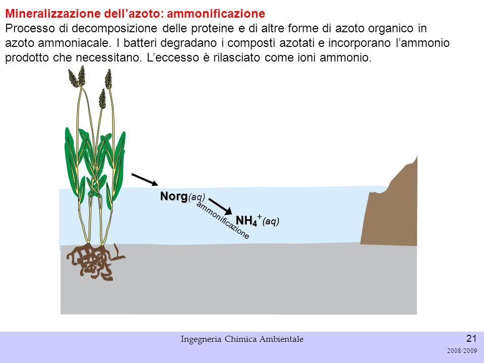 Università di Padova LASA – Laboratorio di Analisi dei Sistemi ambientali Ingegneria Chimica Ambientale 22 2008/2009 Mineralizzazione dellazoto: nitrificazione processo di ossidazione dello ione NH 4 + a ione NO 2 (nitrosomonas) e in seguito eventualmente a ione NO 3 (nitrobacter).