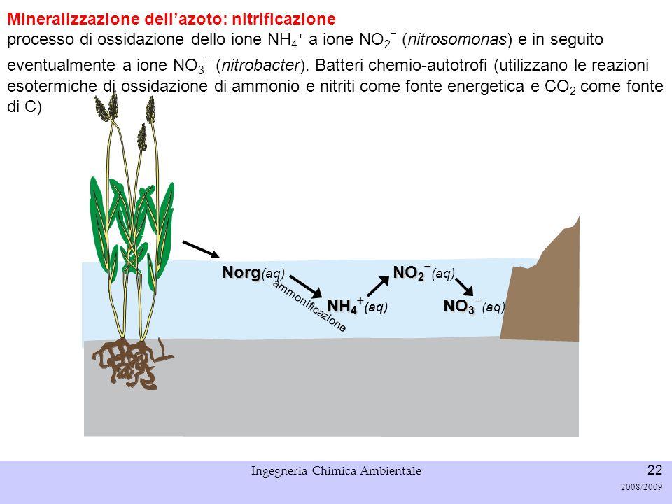 Università di Padova LASA – Laboratorio di Analisi dei Sistemi ambientali Ingegneria Chimica Ambientale 23 2008/2009 Processi biologici – ciclo N 1.Nitrosomonas 2.Nitrobacter Nitrificazione Consumo di ossigeno Ossidazione dellammoniaca è il processo limitante, ma per alte T è il contrario.