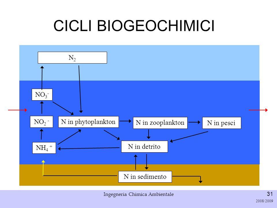 Università di Padova LASA – Laboratorio di Analisi dei Sistemi ambientali Ingegneria Chimica Ambientale 32 2008/2009 CICLI BIOGEOCHIMICI NO 2 - NO 3 - N2N2 N in phytoplankton Accumulo = Input – Ouput ± Reazione