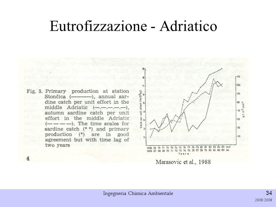 Università di Padova LASA – Laboratorio di Analisi dei Sistemi ambientali Ingegneria Chimica Ambientale 35 2008/2009