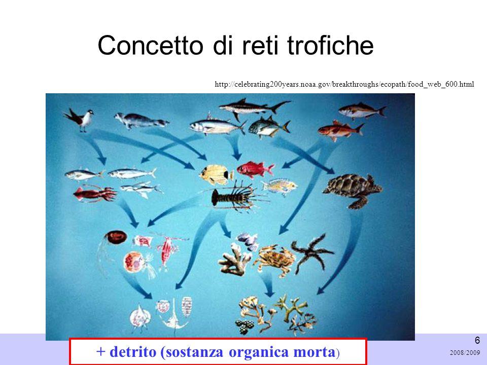 Università di Padova LASA – Laboratorio di Analisi dei Sistemi ambientali Ingegneria Chimica Ambientale 7 2008/2009 Ricircolo materia ed energia: Trophic Level Avviene specialmente nei bassi livelli trofici e.g.