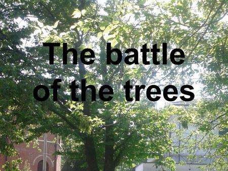 The battle of the trees.