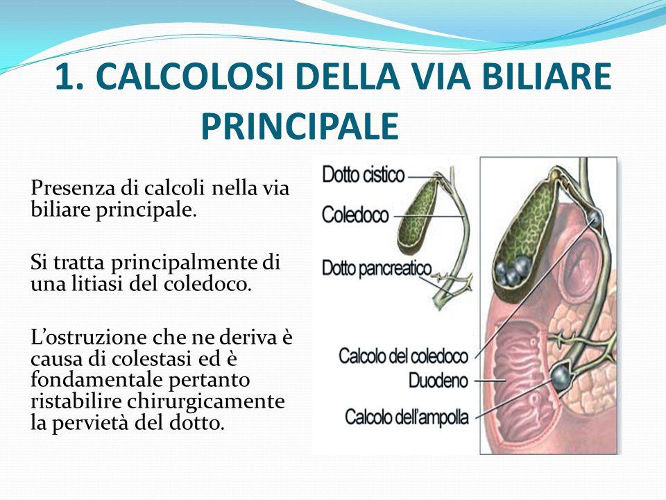 Epidemiologia - 90-95% dei casi: migrazione di calcoli derivanti dalla colecisti (CALCOLOSI SECONDARIA) (migrano durante una colica, ovvero una spremitura della colecisti quando è otturata, provocando dolore intenso come precedentemente descritto) - 5%: calcoli primitivi delle vie biliari (CALCOLOSI PRIMITIVA) in genere a causa della presenza di un ostruzione parziale (calcolo residuo, stenosi traumatiche, colangite sclerosante o anomalie biliari congenite).