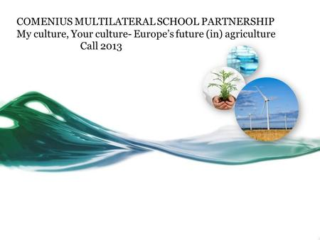 COMENIUS MULTILATERAL SCHOOL PARTNERSHIP My culture, Your culture- Europe's future (in) agriculture Call 2013.