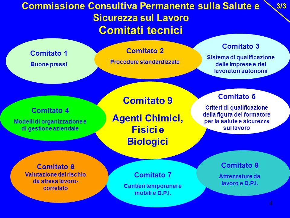 5 Prime indicazioni esplicative in merito alle implicazioni del Regolamento (CE) n.