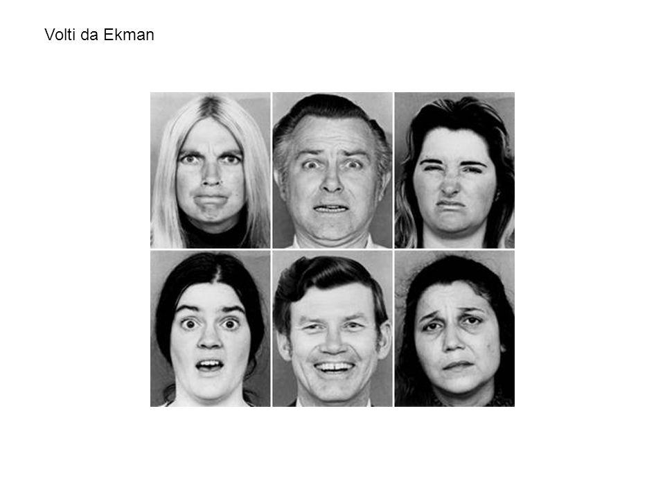 Studenti giapponesi che guardano un film emotigeno da soli (visione privata) esprimono, nei vari momenti del film, emozioni strettamente correlate con quelle dei soggetti americani e altrettanto riconoscibili da osservatori delle due culture, ma in presenza di uno sperimentatore in camice bianco, figura autorevole, scattano le regole di esibizione e i giapponesi mostrano l'imperturbabilità orientale, mascherando le proprie emozioni negative con il sorriso (Ekman e Friesen, 1966).