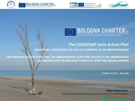 The COASTGAP Joint Action Plan DEVELOPING CONDITIONS FOR THE BLUE GROWTH IN THE MEDITERRANEAN Links between the Joint Action Plan, the implementation of.