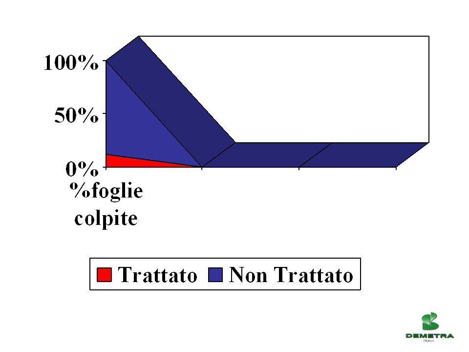 LINEA MICOSAT F – TAB WP (Primo Campione) 40/500,65 kg9,62 % Produzione Ha 675 qli 50/805,85 kg86,69 % 80 +0,20 kg2,95 % Scarto0,05 kg0,74 % LINEA MICOSAT F – TAB WP (Secondo Campione) 40/500,10 kg1,23 % Produzione Ha 810 qli 50/807,45 kg91,98 % 80 +0,50 kg6,17 % Scarto0,05 kg0,62 % LINEA MICOSAT F – TAB WP (Terzo Campione) 40/500,65 kg9,22 % Produzione Ha 705 qli 50/805,60 kg79,43 % 80 +0,75 kg10,64 % Scarto0,05 kg0,71 % Az.