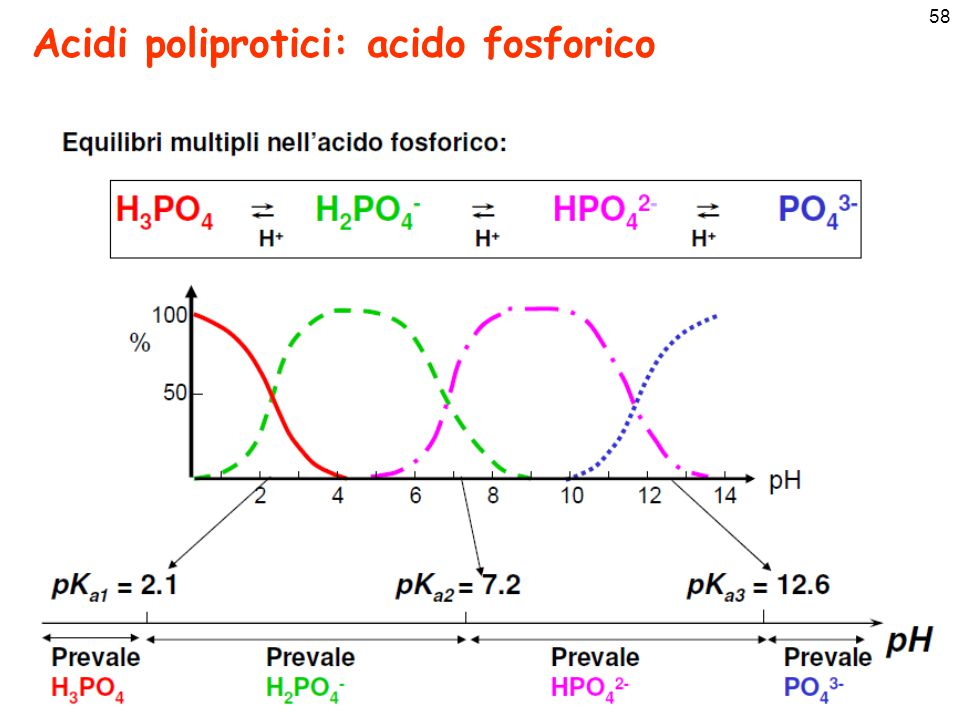 59 Ka di vari acidi poliprotici pKa1 < pKa2 < pKa3 Vale sempre che: AcidoFormula pK a1 pK a2 pK a3