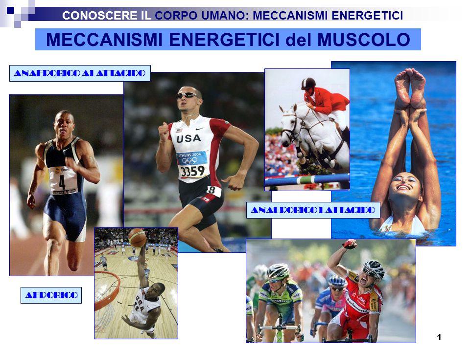 2 MECCANISMI ENERGETICI del MUSCOLO L energia per la contrazione muscolare viene fornita dall' ATP (Adenosin trifosfato) che si scinde in ADP (Adenosin-difosfato) e P (fosfato inorganico) ATP = ADP + P + La quantità di ATP presente nei muscoli è molto limitata per cui è necessario ricostituirla in continuazione.