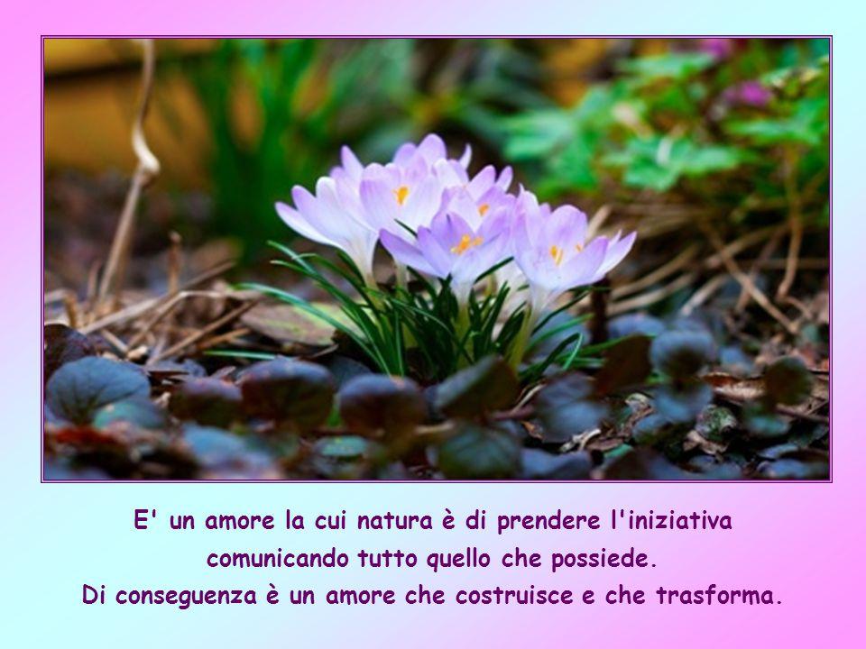 E un amore la cui natura è di prendere l iniziativa comunicando tutto quello che possiede.