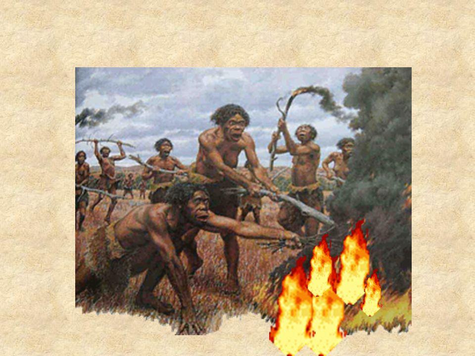 Probabilmente, all'inizio, si diede da fare per mantenere vivo il fuoco Lo alimentava in continuazione con altri pezzetti di legno e lo proteggeva dalla pioggia