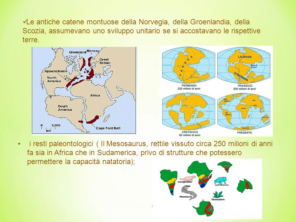 5 argomenti paleoclimatici (le tracce lasciate dagli antichi ghiacciai sulle rocce sembravano dimostrare che India, Australia, Africa meridionale e America meridionale erano state coperte contemporaneamente dai ghiacci, circa 300 milioni di anni fa, presumibilmente prima della loro separazione.) Tillite - sedimenti che costituiscono le morene glaciali (rocce deposte da un ghiacciaio), depositatisi in epoche geologiche anteriori alle glaciazioni del Quaternario.