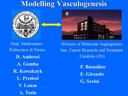 Modelling Vasculogenesis Dept. Mathematics Politecnico di Torino Division of Molecular Angiogenesis Inst. Cancer Research and Treatment Candiolo (TO) F.