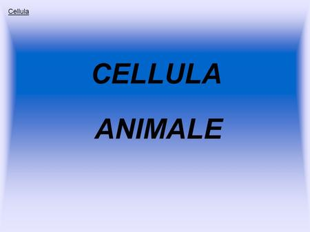Cellula CELLULA ANIMALE.