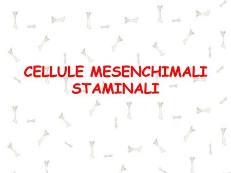 CELLULE MESENCHIMALI STAMINALI. CELLULE STAMINALI Indifferenziate Capaci di autorigenerarsi ( self-renewal) Capaci di differenziarsi in tipi cellulari.