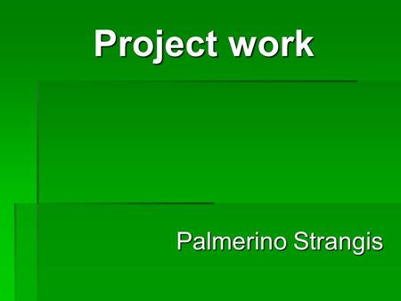 Project work Palmerino Strangis.