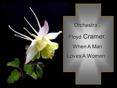 Orchestra Orchestra : Floyd Floyd Cramer. When A Man Loves A Women.