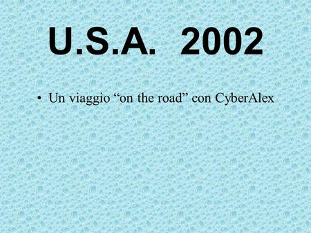 U.S.A. 2002 Un viaggio on the road con CyberAlex.