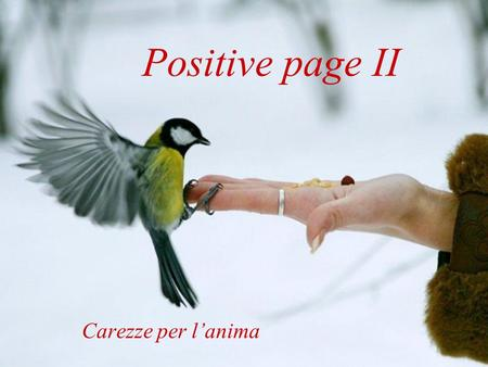 Positive page II Carezze per l'anima.