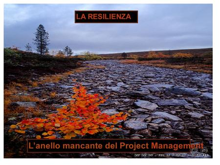 LA RESILIENZA Lanello mancante del Project Management.