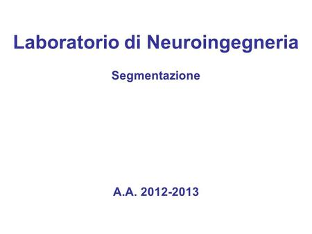 Laboratorio di Neuroingegneria