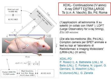 (1)applicazioni allastronomia X su satelliti (in collab con lINAF ). LOFT (Large Observatory for x-ray timing), ESA M3 mission. (2)e alla bio-medicina.