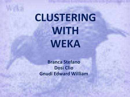 CLUSTERING WITH WEKA Branca Stefano Dosi Clio Gnudi Edward William.