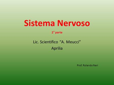 "Lic. Scientifico ""A. Meucci"""