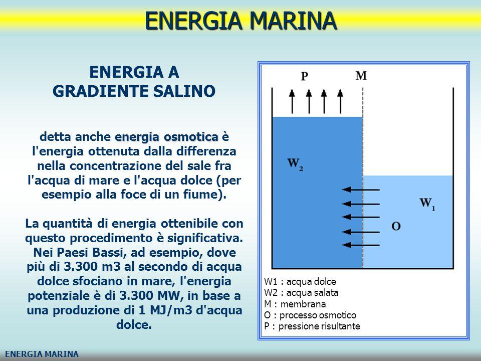 ENERGIA MARINA ENERGIA MAREOMOTRICE L energia mareomotrice è quella ricavata dagli spostamenti d acqua causati dalle maree, che in alcune zone del pianeta possono raggiungere anche i 20 metri di ampiezza verticale.