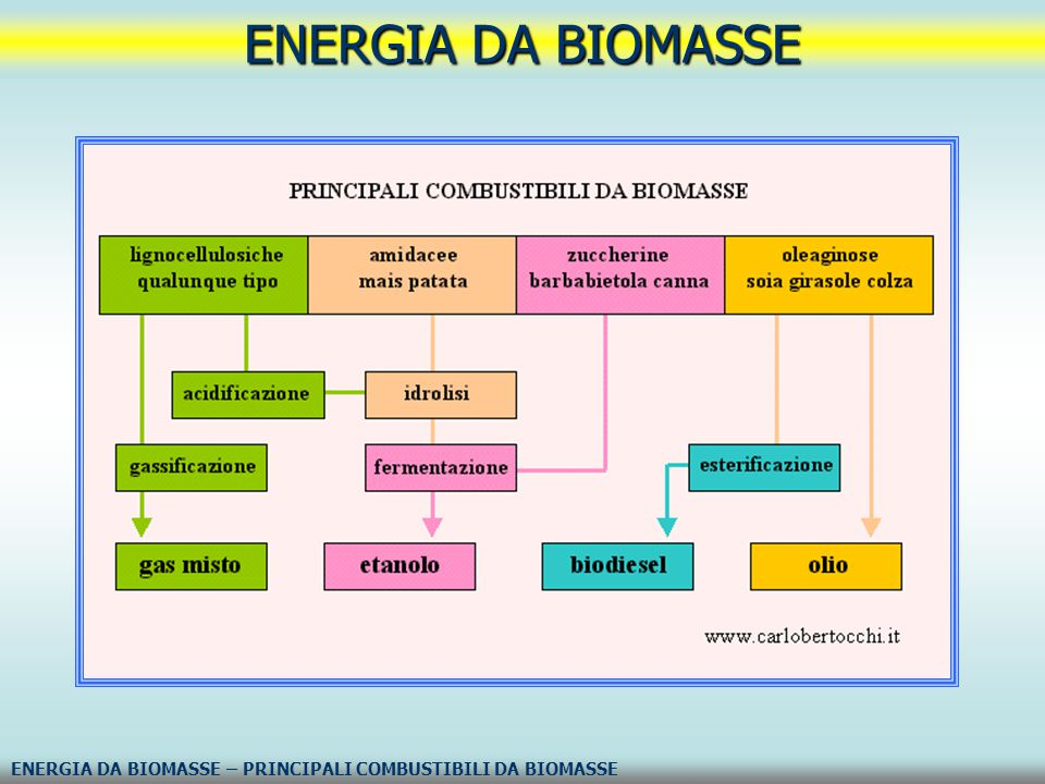 La biomassa costituisce una risorsa rinnovabile e inesauribile, a patto che essa venga sfruttata non oltrepassando il ritmo di rinnovamento biologico.