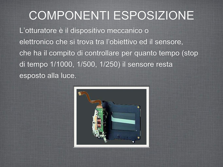 COMPONENTI ESPOSIZIONE Il sensore ottico (ISO) La qualità del sensore si misura: dalla capacità di amplificare il segnale prodotto dalla conversione della luce incidente, producendo il minor rumore possibile.