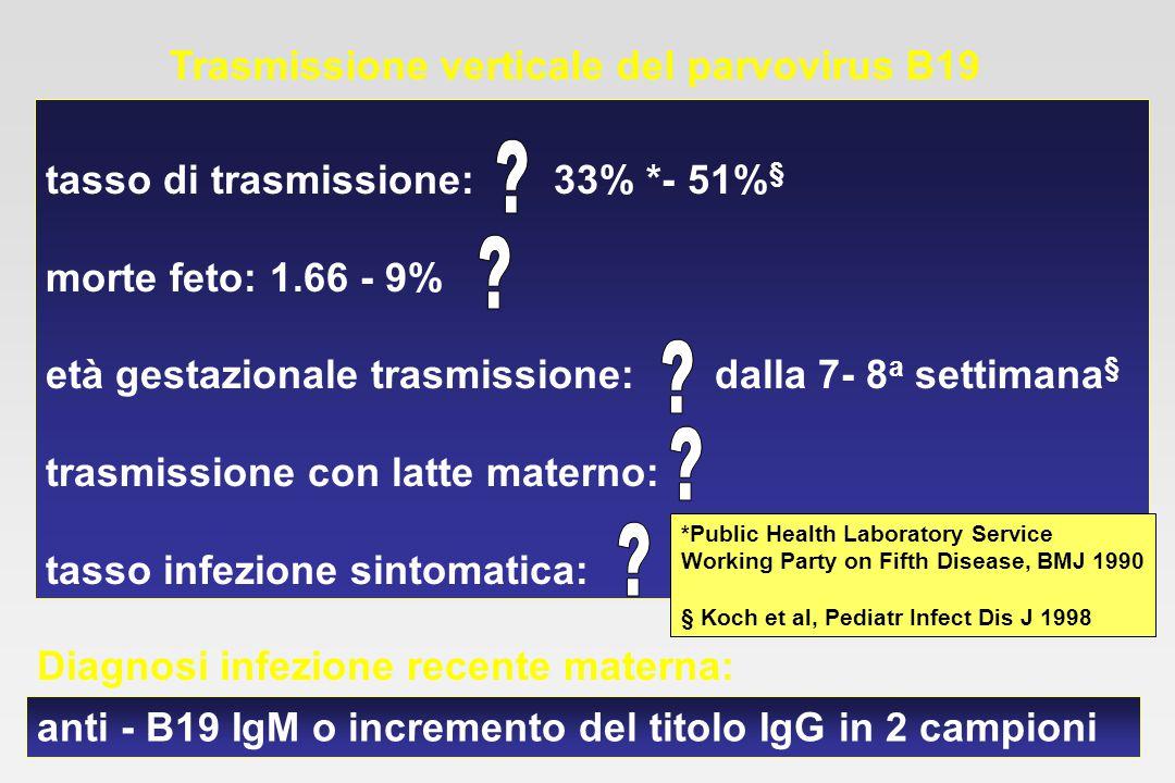 Valutazione sierologica e virologica in 43 neonati da madre con infezione primaria da parvovirus B19 solo IgM+6/43 solo PCR+4/43 PCR+ e IgM+1/43 PCR+ e IgA+2/43 PCR+, IgM+e IgA+5/43 solo IgA+4/43 totale22/43 (51%) Koch et al, Pediatr Infect Dis J 1998