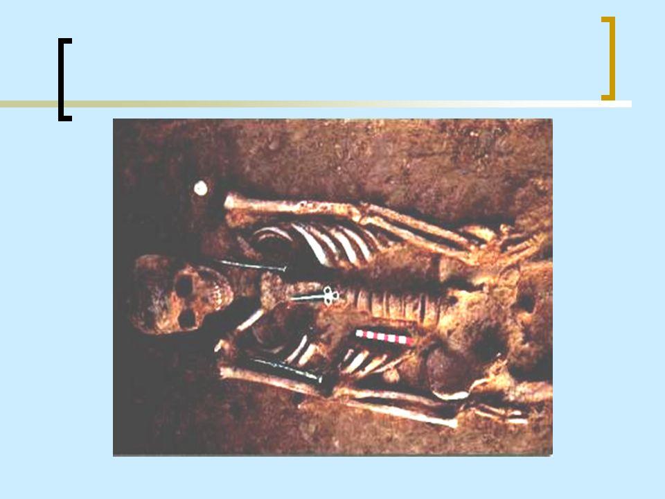 Due degli inumati risultano deceduti per un colpo di spada da stocco ( ossia trafitti dalla punta dell arma e non dai bordi che non erano affilati).