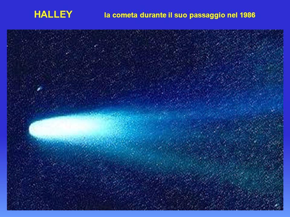 HALLEY la cometa durante il suo passaggio nel 1986