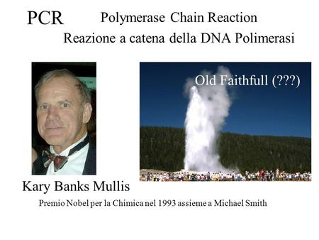 PCR Polymerase Chain Reaction Reazione a catena della DNA Polimerasi Premio Nobel per la Chimica nel 1993 assieme a Michael Smith Old Faithfull (???) Kary.