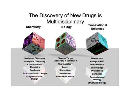 The Drug Discovery Process  Program selection (disease)  Drug Target Identification and Target Validation  Lead Compound Identification  Lead Optimization.