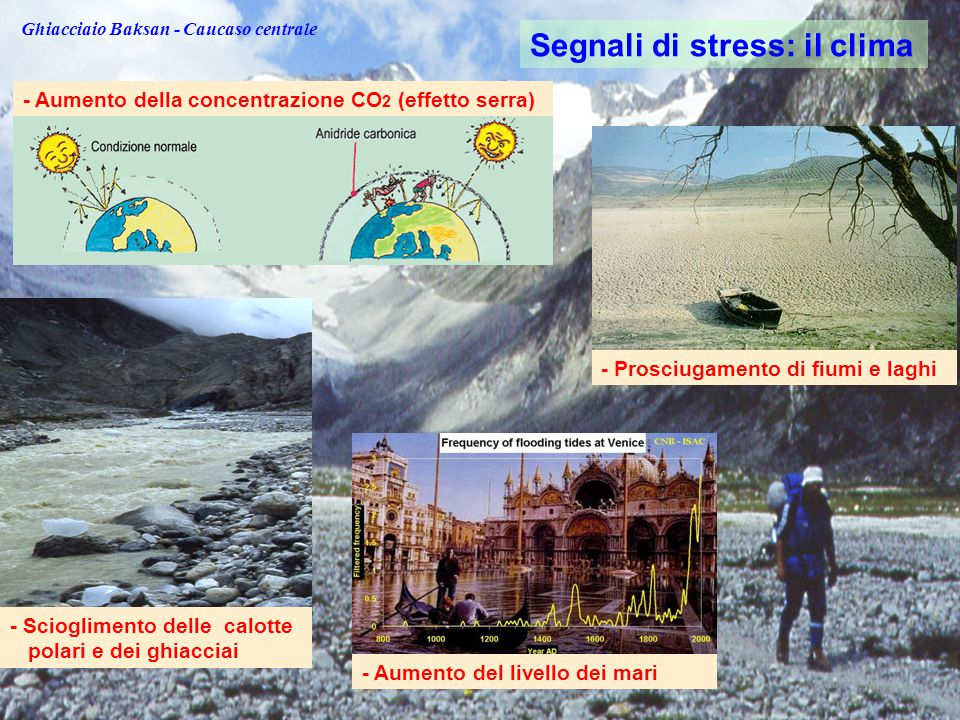 Acqua, risorsa strategica I dati dei glaciologi parlano di un ritiro dei ghiacci pressoché generalizzato in: - Artide - Antartide - Groenlandia - Alpi - Caucaso - Himalaya - Kilimanjaro - Ande