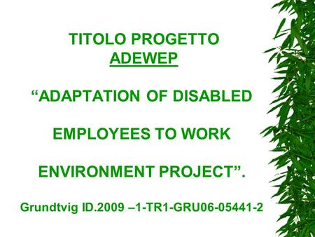 "TITOLO PROGETTO ADEWEP ""ADAPTATION OF DISABLED EMPLOYEES TO WORK ENVIRONMENT PROJECT"". Grundtvig ID.2009 –1-TR1-GRU06-05441-2."
