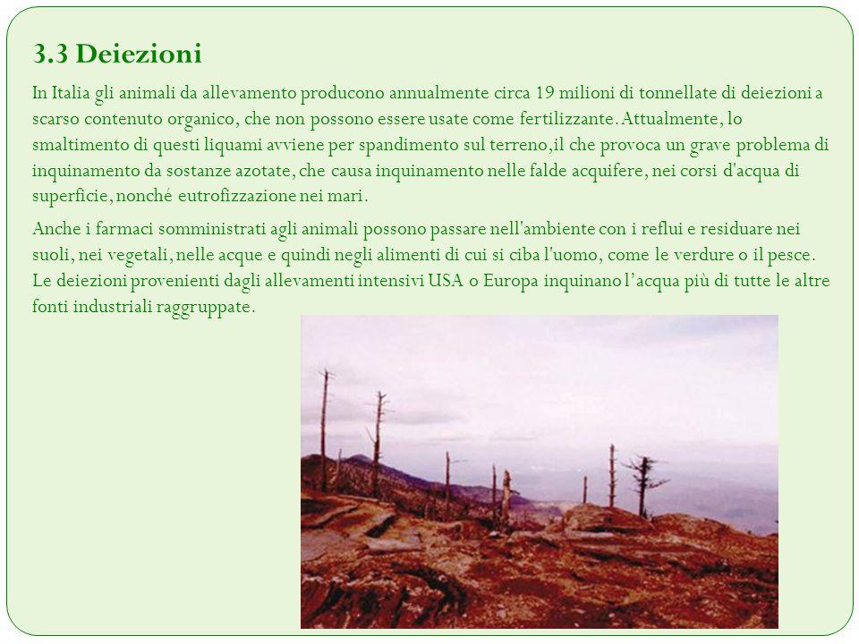 3.4 Deforestazione Molti credono (grazie ai media) che le foreste pluviali vengono abbattute per il legname.