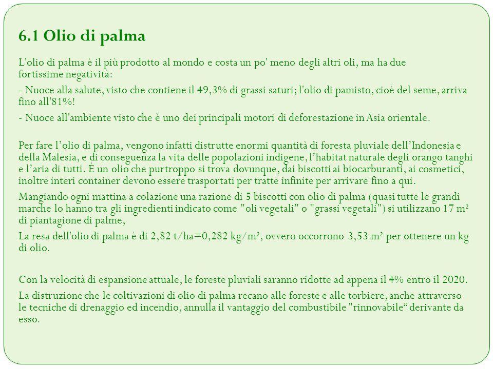 6.2 Biocombustibili Un rimedio peggiore del male.