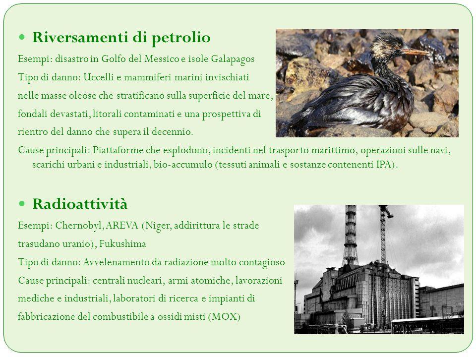 Inquinamento Urbano Esempi: Secondo l'Organizzazione mondiale della sanità i morti per inquinamento atmosferico raggiungono la cifra annua dei 2.4 milioni.