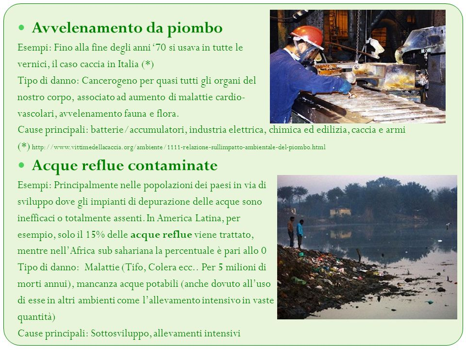 Inquinamento agricolo Esempi: Acque contenenti Arsenico, mercurio, piombo ecc..