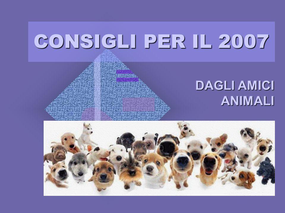 CONSIGLI PER IL 2007 DAGLI AMICI ANIMALI