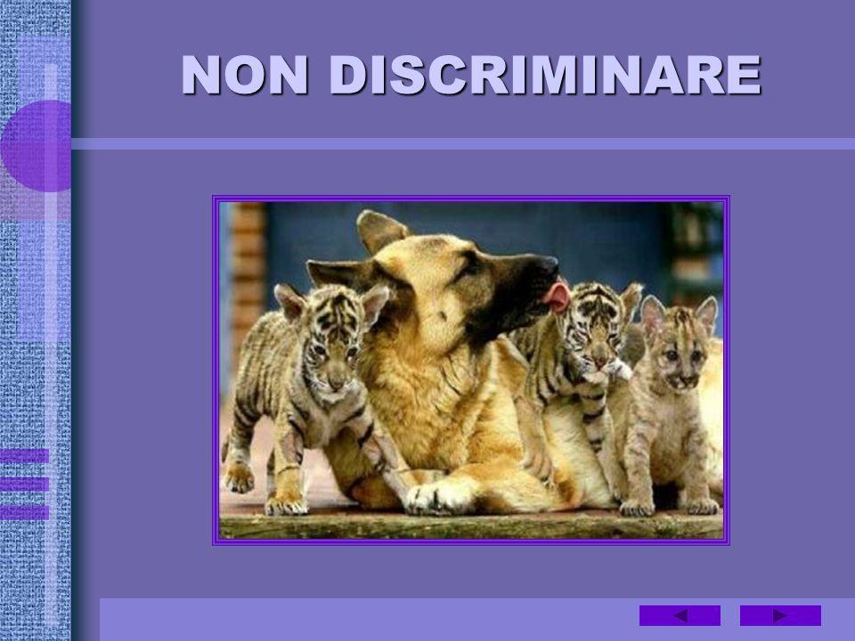 NON DISCRIMINARE